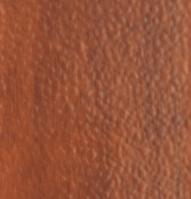 31 кедр (Премиум)